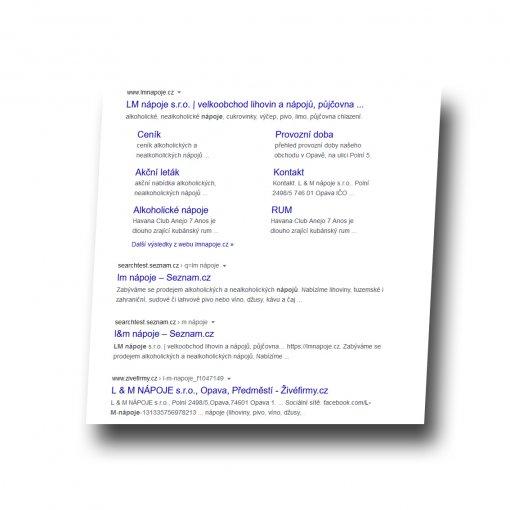 SEO - analýza - vyhledávání